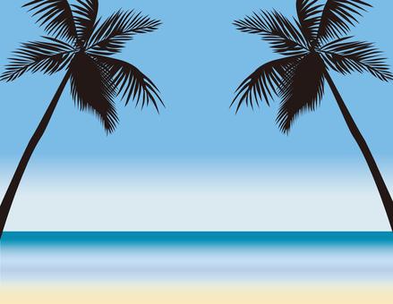 Palm tree day 3