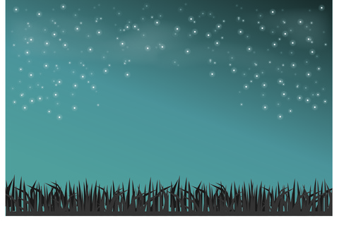 Starry sky and grass