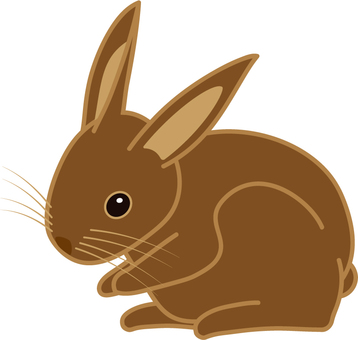 Brown rabbit / Rabbit