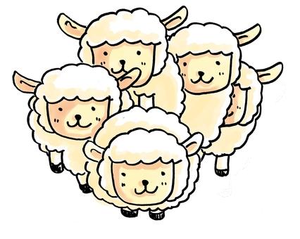 Mai sheep