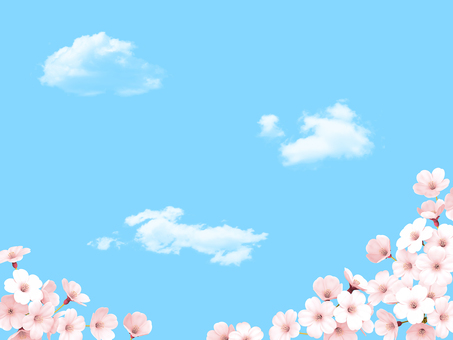 Sakura blue sky and white cloud frame