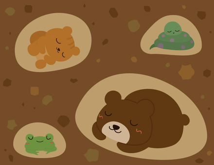 Winter animals _ hibernation