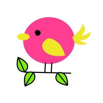 Red bird 8