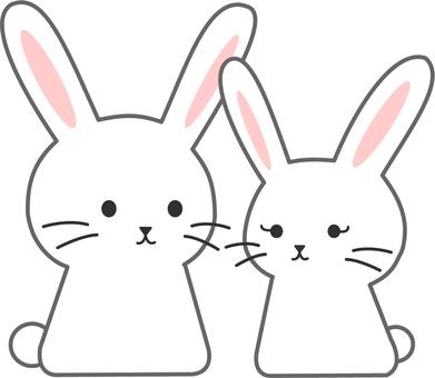 【Animals】 Moon Rabbit