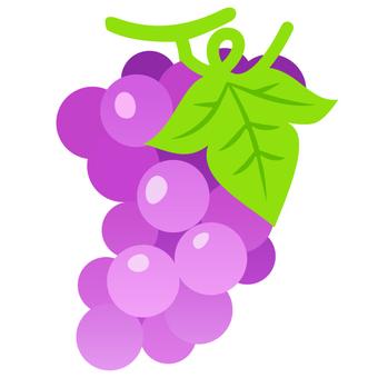 No grapes _ line