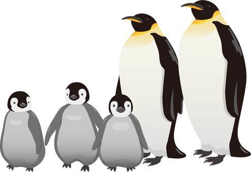 Emperor Penguin parent and child 3