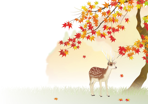 Autumn leaves and deer _ horizontal size