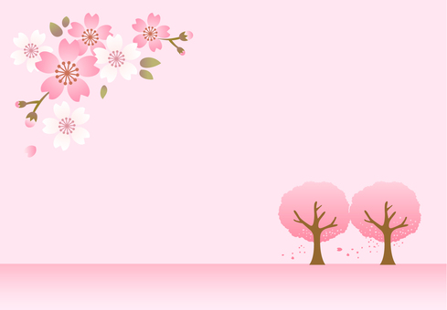 Cherry blossom frame background