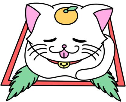Mirror cake cat