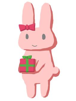 兔子禮物禮物桃紅色顏色