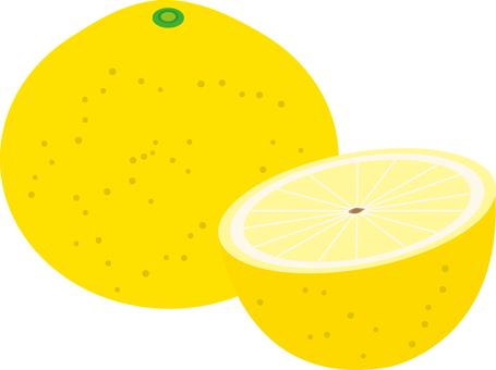 Food Series Fruit Grapefruit
