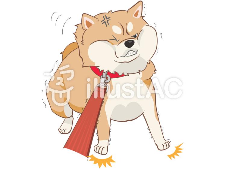 動物-柴犬-拒否のイラスト