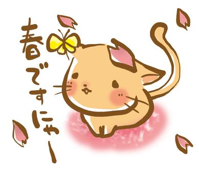 Neko is Spring Nya