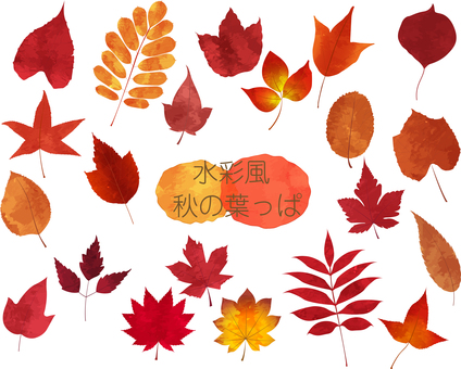 Watercolor style autumn leaves