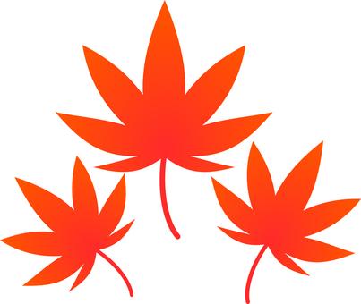 【圖片】秋葉
