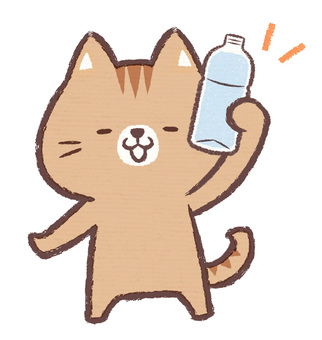Plastic bottle cat