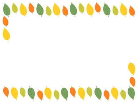 느티 나무의 잎의 구조
