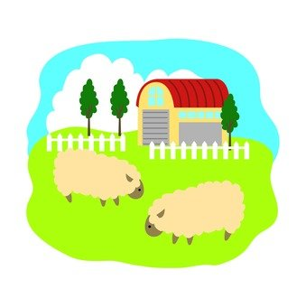 Grazing of sheep