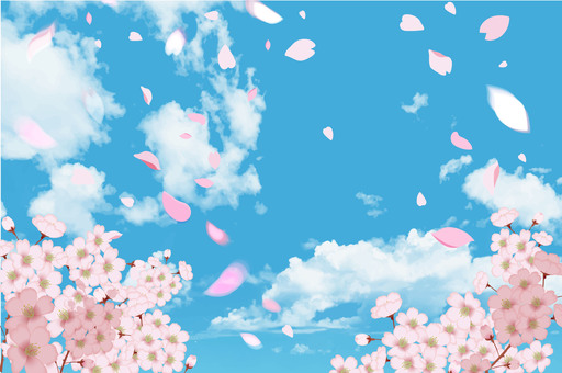 Cherry blossoms and blue sky CS5