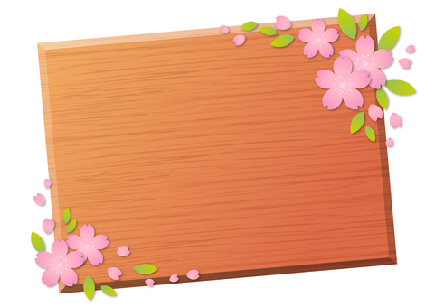 Cherry blossoms 101