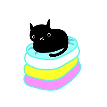 Cat and laundry
