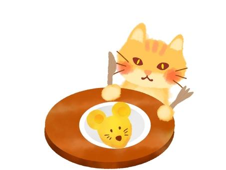 Cat's rice