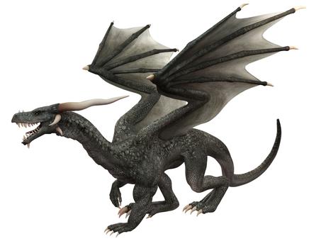 グレイ・ドラゴン