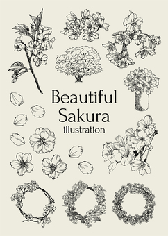 아름다운 벚꽃 일러스트
