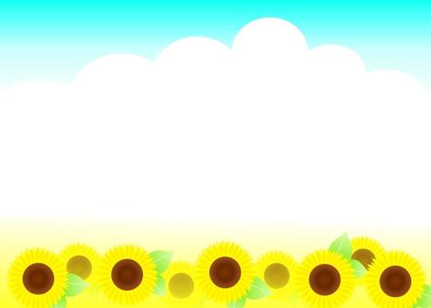 해바라기 여름 안부 편지