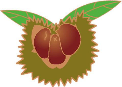 Chestnut-attached -3