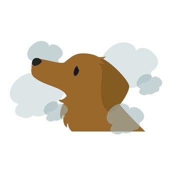 Vice smoke