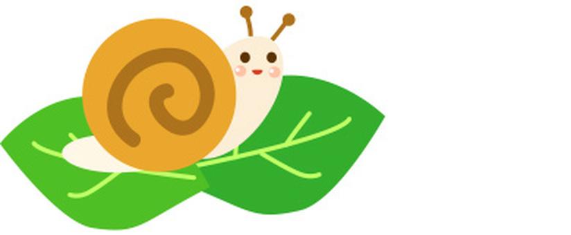 Snail rainy season