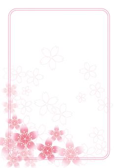 Sakura Sakura & Board 56