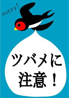 Be careful with swallows Poster