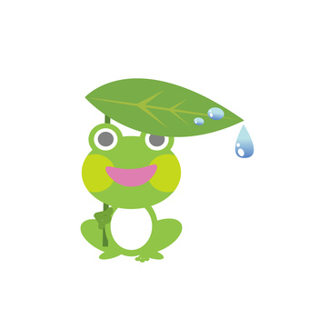 A frog that marks an umbrella of a leaf