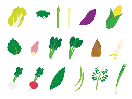 Simple vegetables various 2