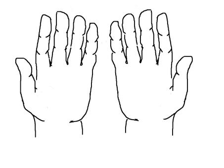 Palm of hand (both hands)