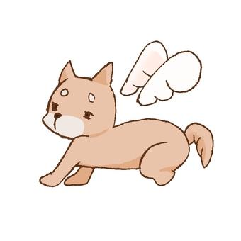 Feather dog