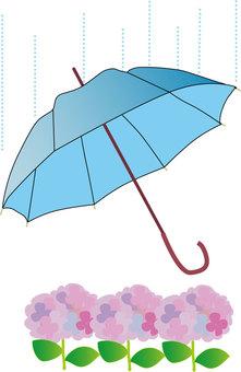 Umbrella and hydrangea illustration