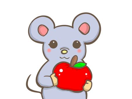 사과를 가진 쥐