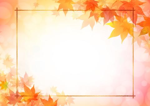 Fall image material 114