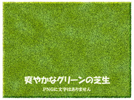 Grass texture yellow green real