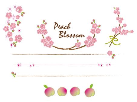 Peach blossom and fruit