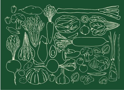 초크 바람 야채 바구니