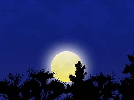 Moonlit night 1