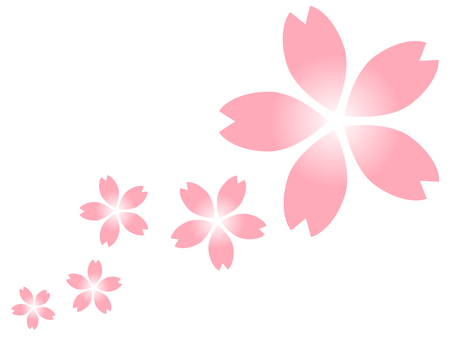 Cherry blossom flower gradation