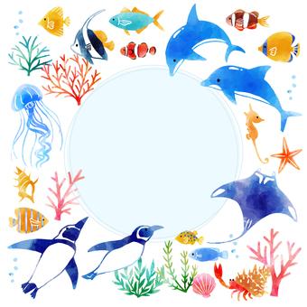 Popular aquarium
