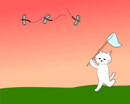 Nyanko's chasing a dragonfly