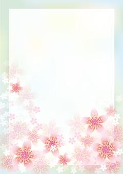 Cherry Blossoms & Boards 14