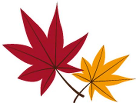 낙엽 09